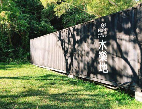 廢棄貨櫃屋打造的遊戲露營空間-Joyland野餐露營