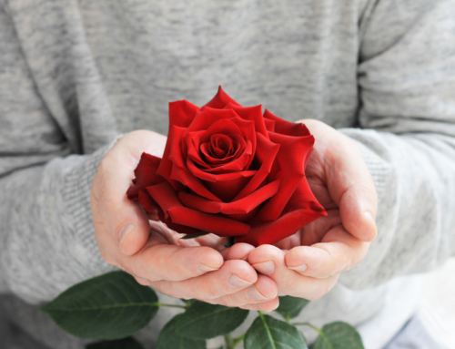 【反霸凌特輯 4 】玫瑰少年的惡夢|性霸凌