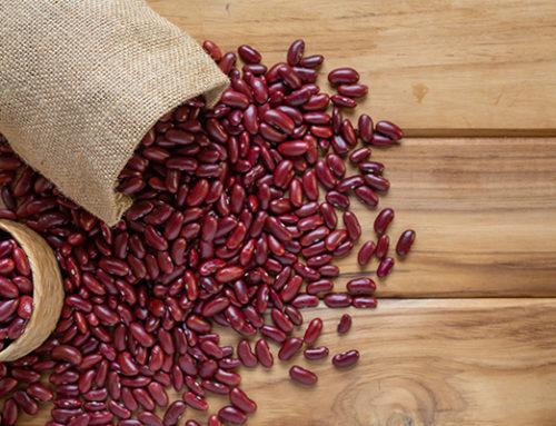 吃紅豆可補鐵?關於「鐵質」必須知道的事